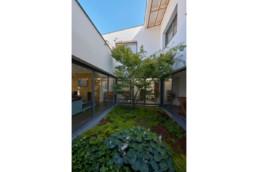 touton architectes - maison - contemporaine - patio - végétation